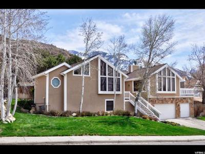 Holladay Single Family Home For Sale: 6499 S Canyon Cove Pl E