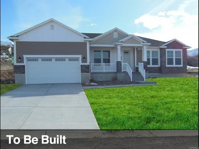 Springville Single Family Home For Sale: 510 S 1925 E #25