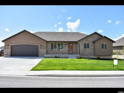 Nephi Single Family Home For Sale: 828 S 310 E