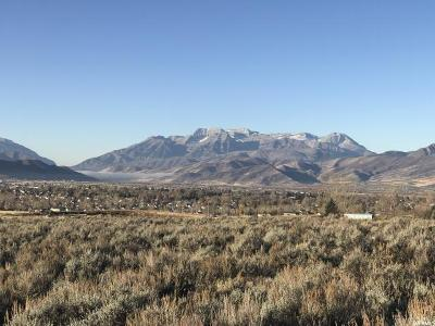 Wasatch County Residential Lots & Land For Sale: 1070 N Oquirrh Mountain Dr (Lot 62)