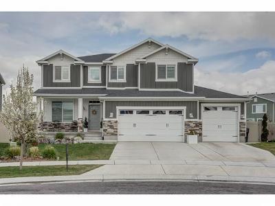 Orem, Lindon, Vineyard Single Family Home For Sale: 39 E Zen Rd
