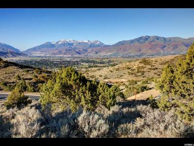 Wasatch County Residential Lots & Land For Sale: 2303 E La Sal Peak Dr (Lot 508)