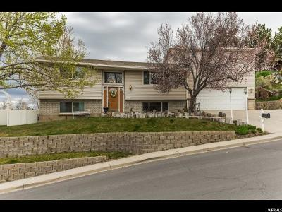 Orem Single Family Home For Sale: 1008 W 105 N