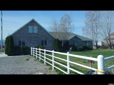 Lehi Single Family Home For Sale: 1385 W 700 S