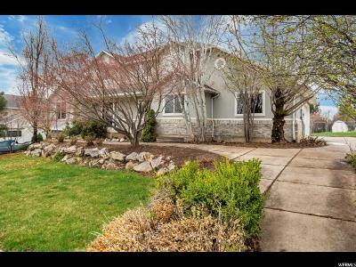 Weber County Single Family Home For Sale: 3823 N 650 W