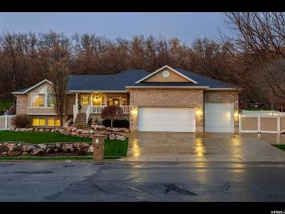 Layton Single Family Home For Sale: 2491 Kays Creek Dr.