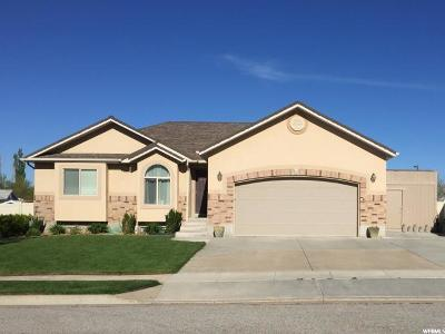 Kaysville Single Family Home For Sale: 817 N 600 W