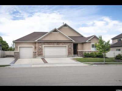Riverton Single Family Home For Sale: 3366 W Chatel Dr