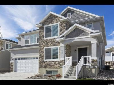 Lehi Single Family Home For Sale: 642 W 4050 N