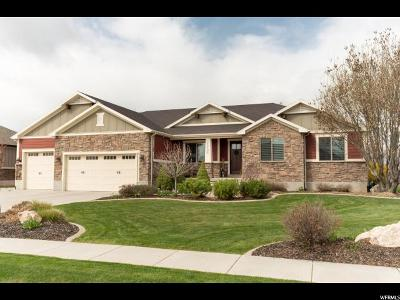 Weber County Single Family Home For Sale: 1721 N 3500 W