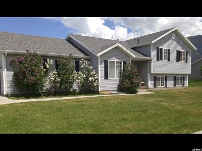 Hyrum Single Family Home For Sale: 1043 E Hyrum Blvd S