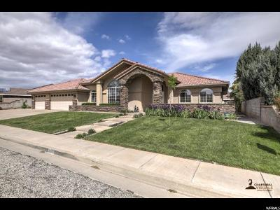St. George Single Family Home For Sale: 851 S Morningside Dr