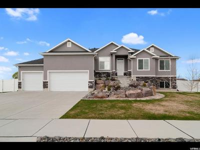 Weber County Single Family Home For Sale: 2577 N 2450 W
