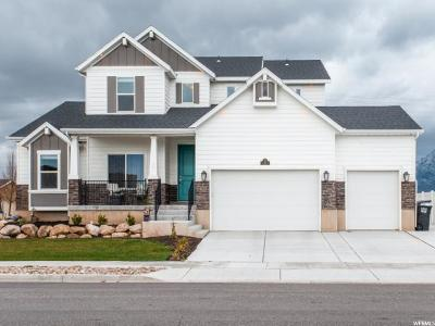 Kaysville Single Family Home For Sale: 8 N 2300 W