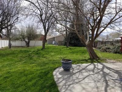 Lehi Single Family Home For Sale: 272 E 200 N