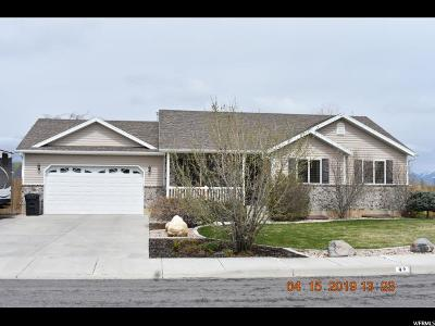 Santaquin Single Family Home For Sale: 49 E 580 N