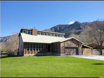Single Family Home For Sale: 415 E 700 N