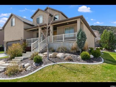 Eagle Mountain Single Family Home For Sale: 6969 N Mohawk Dr