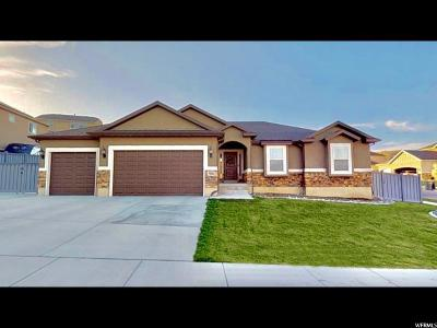Eagle Mountain Single Family Home For Sale: 7081 N Hollow View Ct