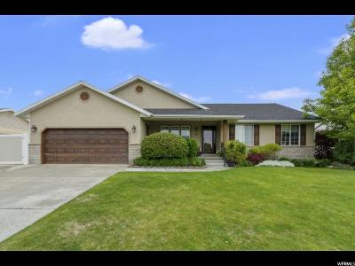 Lehi Single Family Home For Sale: 743 E Airport Dr