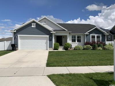 Springville Single Family Home For Sale: 984 W 1550 S
