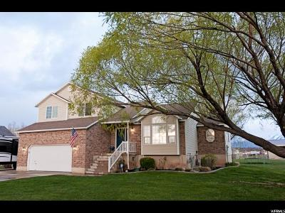 Weber County Single Family Home For Sale: 4500 S 4100 W