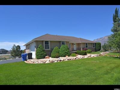Weber County Single Family Home For Sale: 3434 W North Plain City Rd
