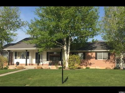 Salem Single Family Home For Sale: 675 S 70 W