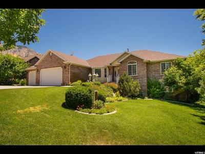 Weber County Single Family Home For Sale: 3664 N 650 E
