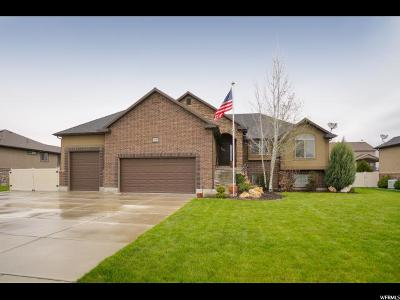 Weber County Single Family Home For Sale: 2796 W 2125 N