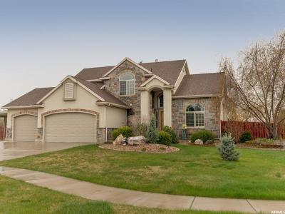 Layton Single Family Home For Sale: 3691 W 850 N