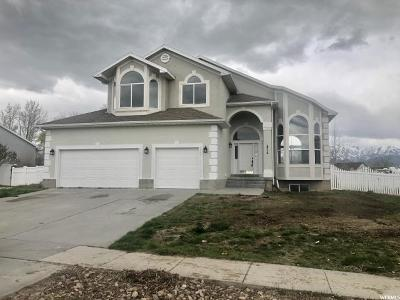 Tooele County Single Family Home For Sale: 1072 Davenport Dr