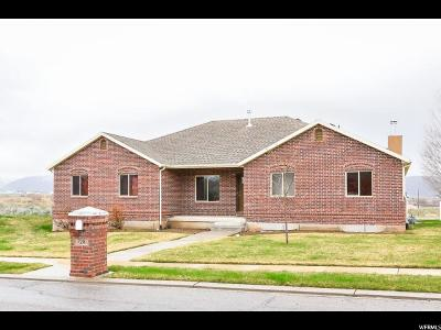 Wasatch County Single Family Home For Sale: 728 E 260 S