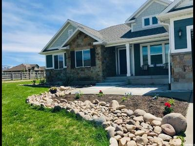 Wasatch County Single Family Home For Sale: 1460 E 400 S