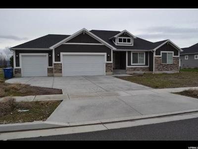 Millville Single Family Home For Sale: 117 N 430 E
