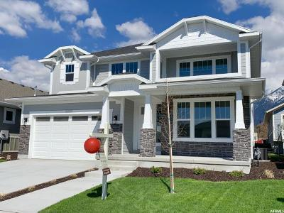 Sandy Single Family Home For Sale: 10685 S Dielsdorf Rd E