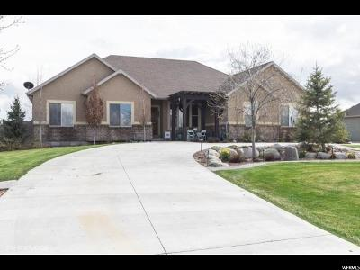 Eagle Mountain Single Family Home For Sale: 1202 E Ira Hodges Scenic Pkwy N