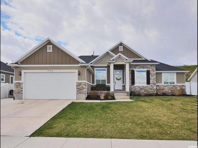 Spanish Fork Single Family Home For Sale: 1064 S River Ridge Ln