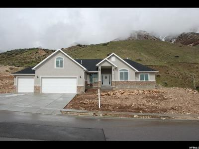 North Ogden Single Family Home Under Contract: 3252 N Mountain Rd E