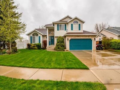 Davis County Single Family Home For Sale: 2864 W Brady Way N
