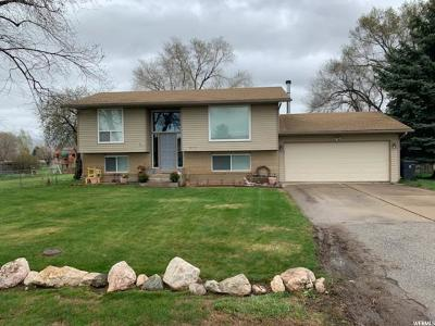 Weber County Single Family Home For Sale: 2970 S 2850 W