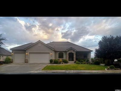 St. George Single Family Home For Sale: 87 Shadow Point Dr