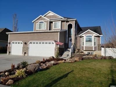 Davis County Single Family Home For Sale: 481 N 3475 W