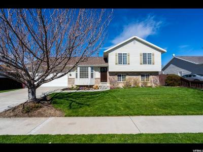 Lehi Single Family Home For Sale: 1816 N Mesa Dr