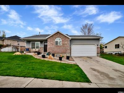 Single Family Home For Sale: 1782 N Gold River Dr