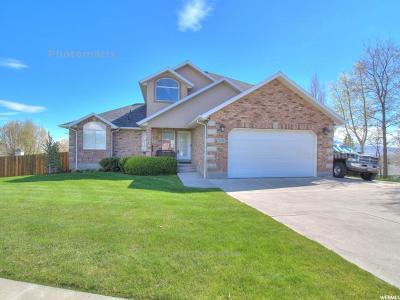 Lehi Single Family Home For Sale: 1176 E Cedar Ridge Rd