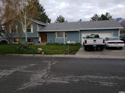 Tooele County Single Family Home For Sale: 32 Lakeview