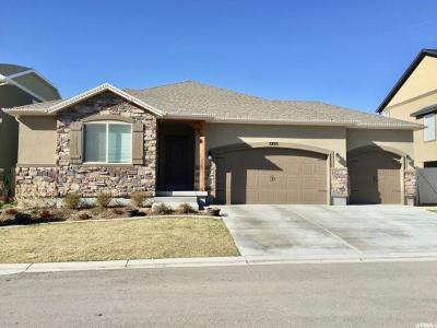 Lehi Single Family Home For Sale: 3723 N Bull Hollow Way