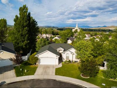 Payson Single Family Home For Sale: 1438 S 680 W