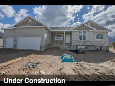 Salem Single Family Home For Sale: 348 N 710 E #20